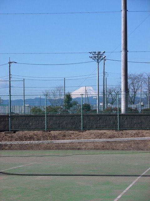 テニスコートweb.JPG